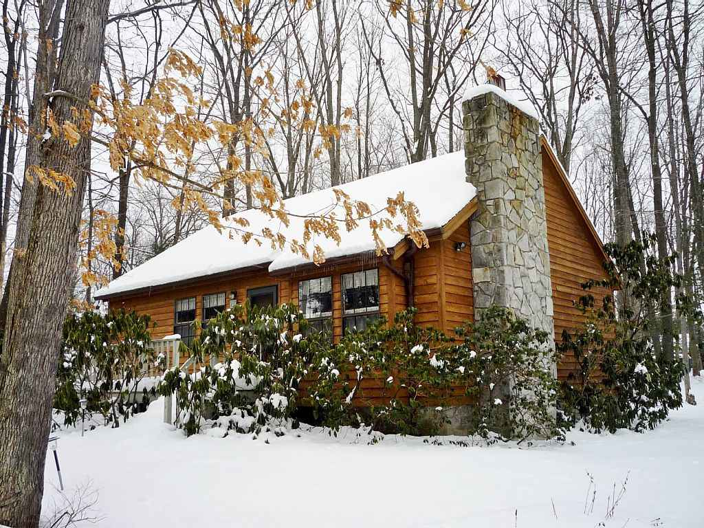 Red Run Cabin - Winter